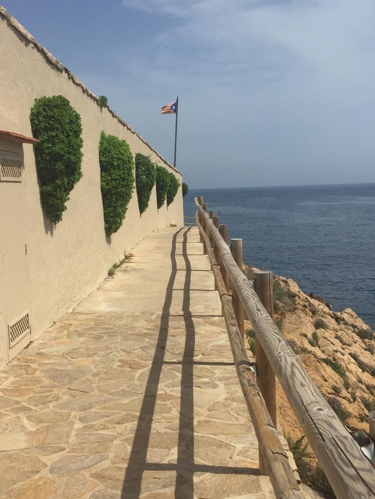 Flag of Catalonia on sea cliff